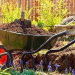 Environmentally Friendly Landscaping